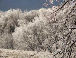 winter-getaways